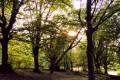 Lezione Itinerante nella Riserva del Monti San Vicino e Canfaito