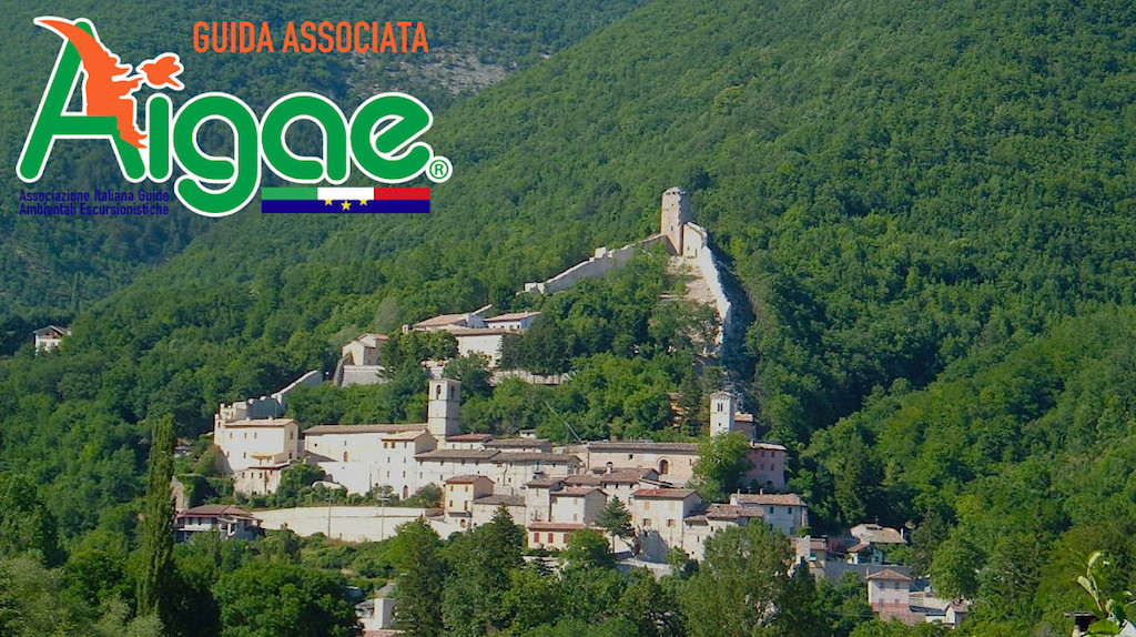 Castel_S_Angelo_2021_fb